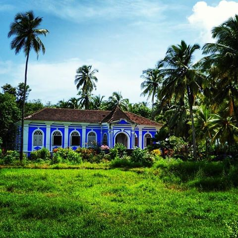 Portuguese house and lush green fields in Goa during monsoon season