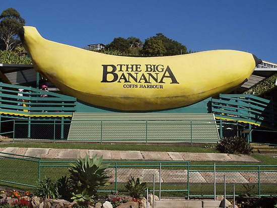 Part of an Aussie Road Trip is spotting the 'Big Things'like this Big Banana near Coffs Harbour