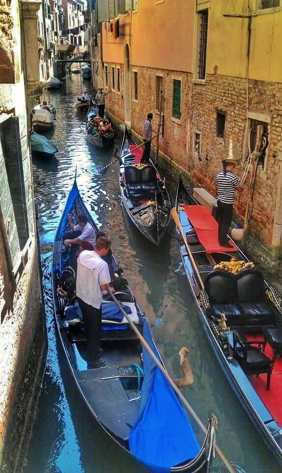 gondola traffic jam in Venice
