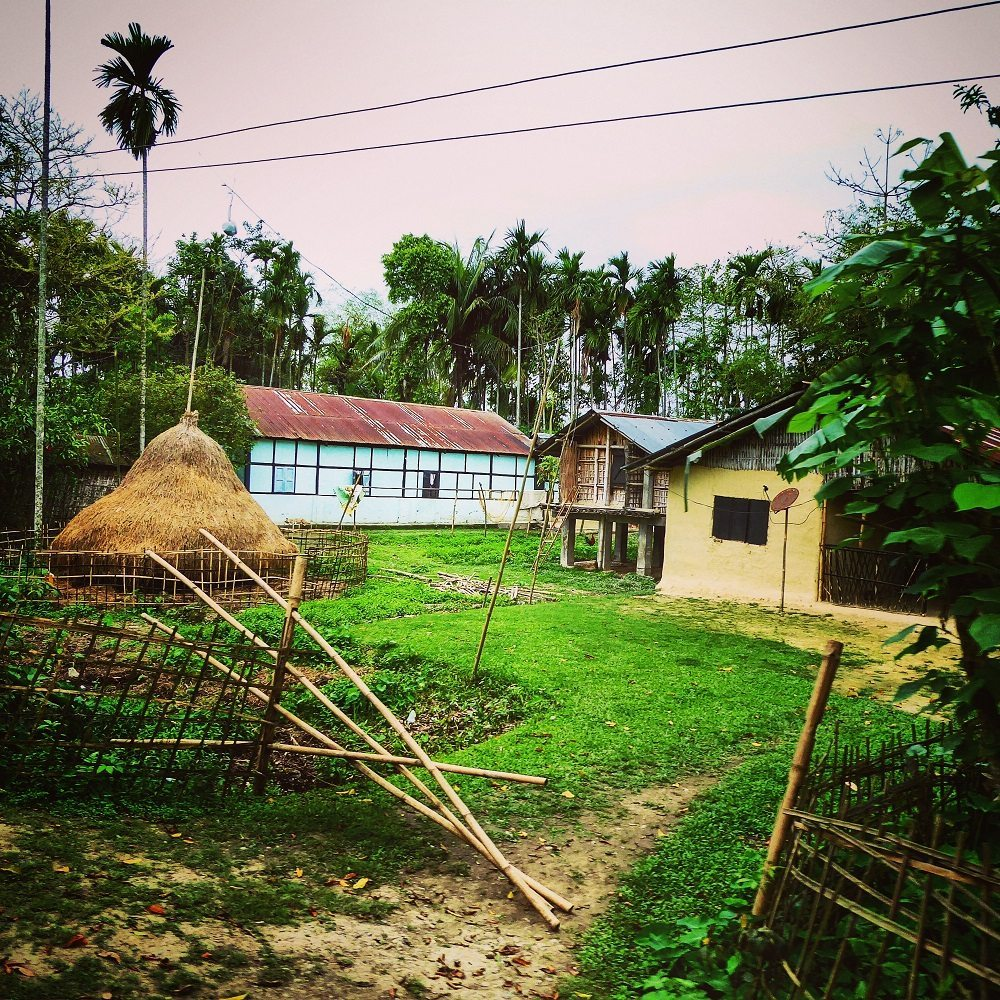 Typical Assamese countryside houses