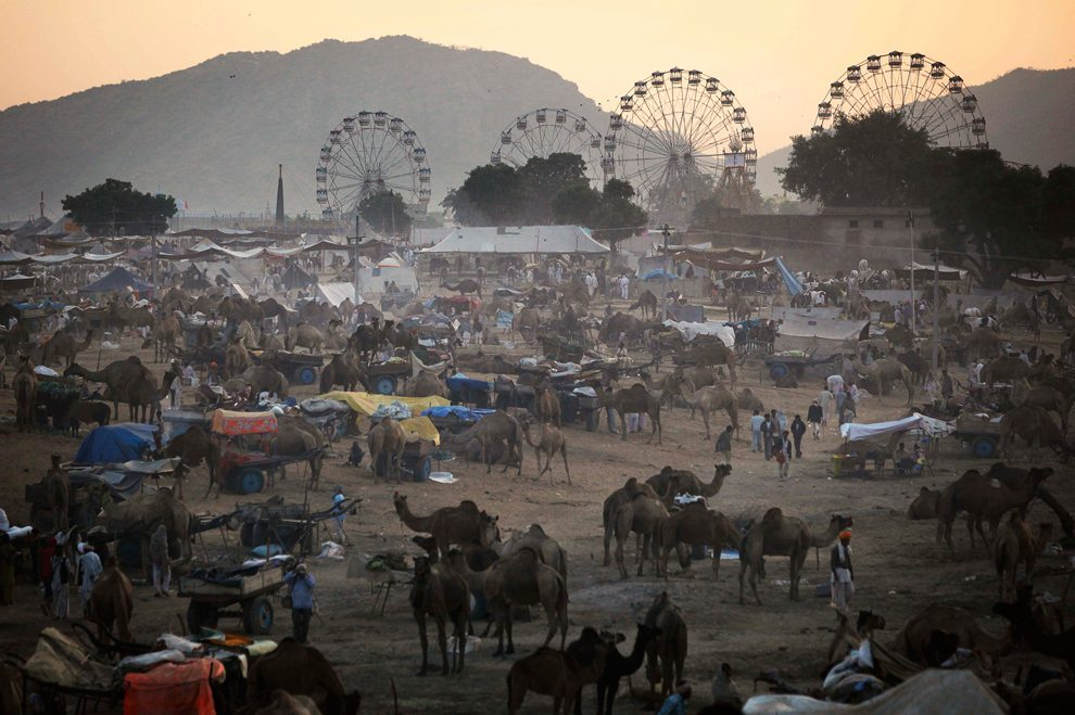 The carnival like atmosphere at Pushkar Camel Fair