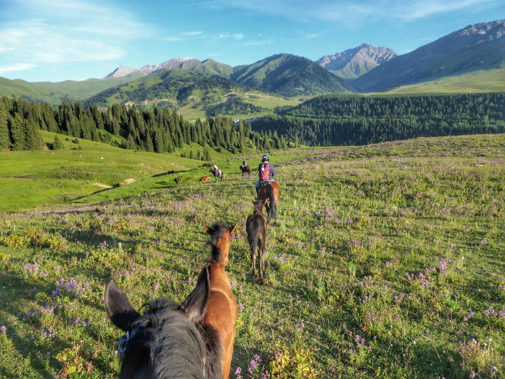 horse trekking in Jyrgalan