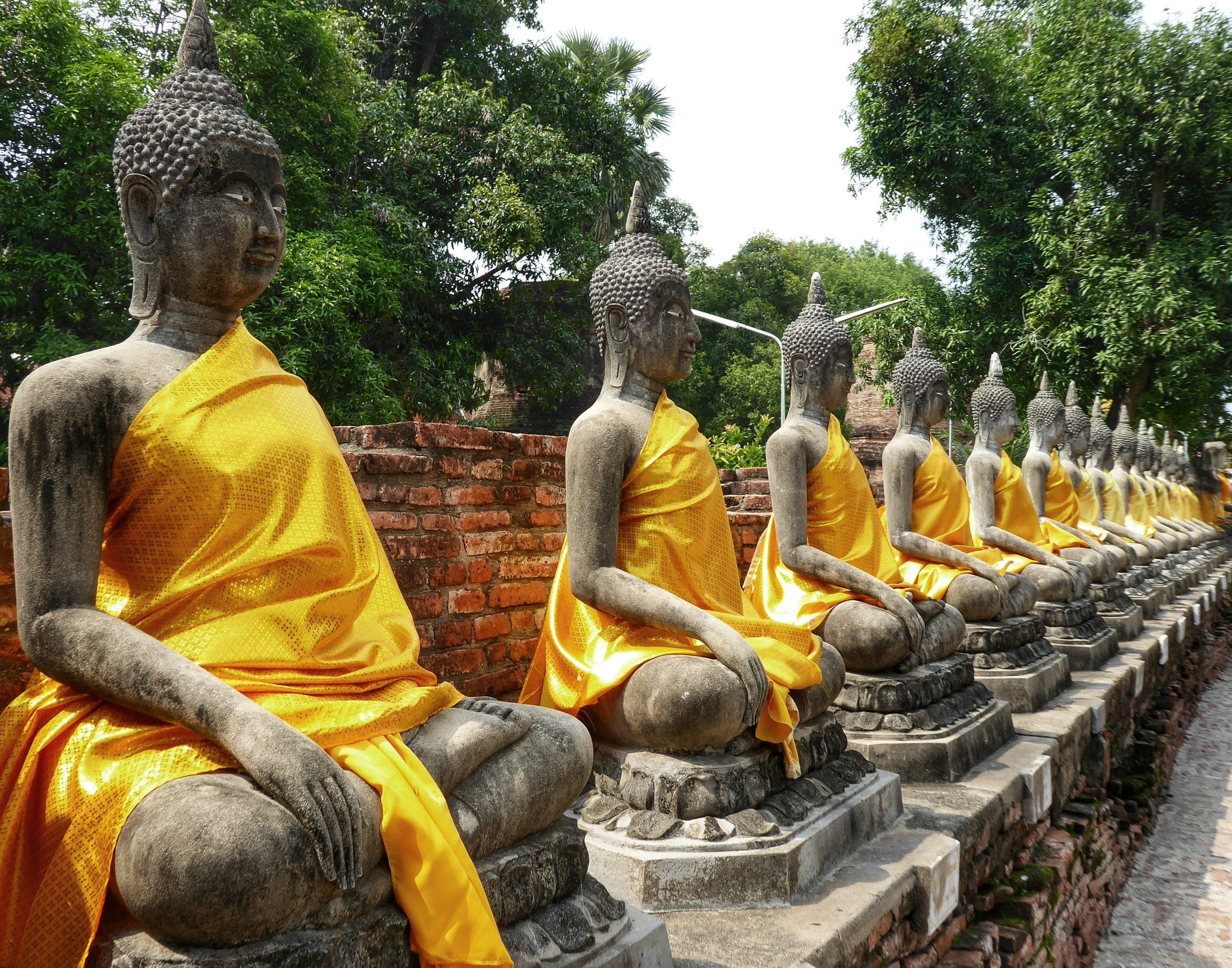 buddhas thailand ayutthaya